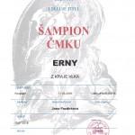 Erny z Kraje vlka ŠAMPION ČMKU